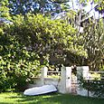 Manly_scenic_walk_27