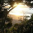 Byron Bay 82